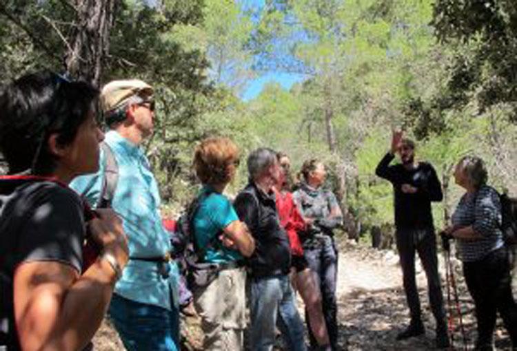 Coneixem l'experiència de custòdia del territori del projecte Muntanya del Voltor