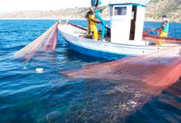 La pesca a la Serra de Tramuntana, passat, present … i futur?