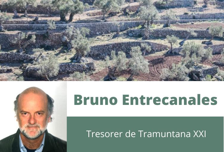Destil·lat del punt de vista d'un propietari de la Serra